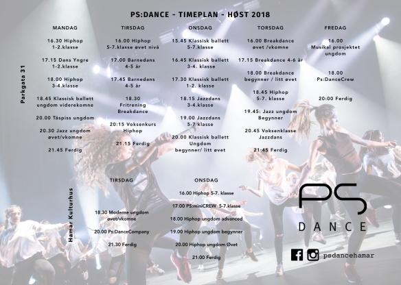 Ny Timeplann print 2018 1